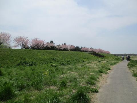 106小山総合公園1
