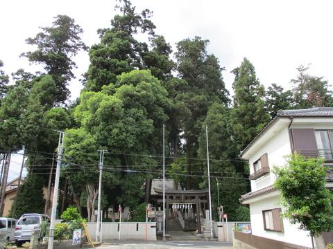 214春日神社前の道