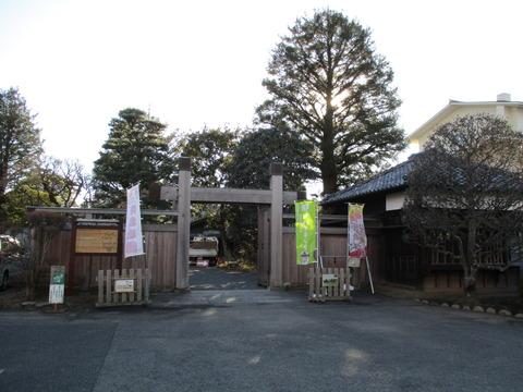 267旧堀田邸・さくら庭園3