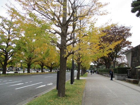 20江戸城跡2