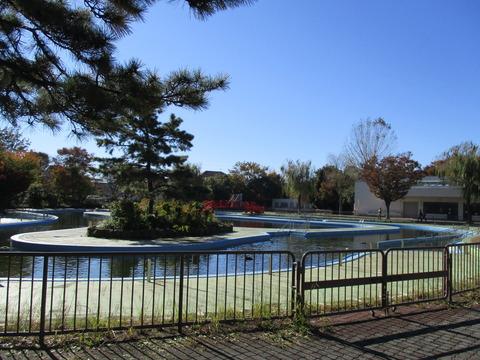 64菊名池公園プール1