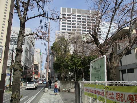 181桜木中学校1
