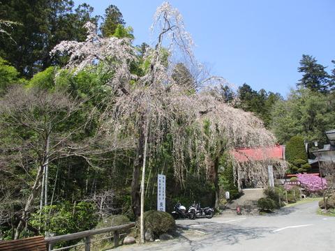 146宝登山神社7