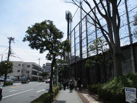 87江戸川区球場1