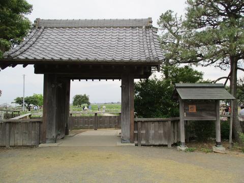 102菖蒲城址あやめ園1