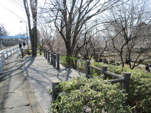 91中福生公園1