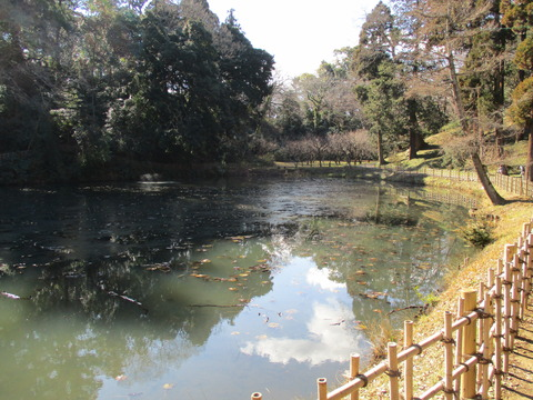 137姥が池2