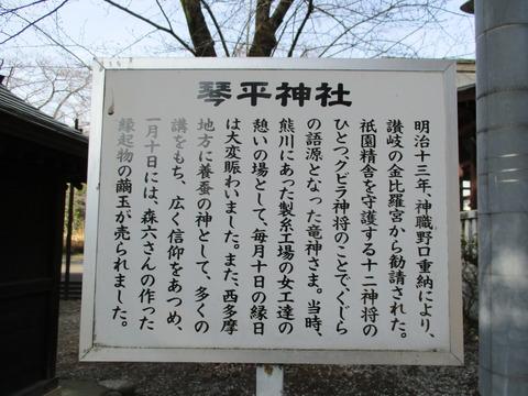 165琴平神社2