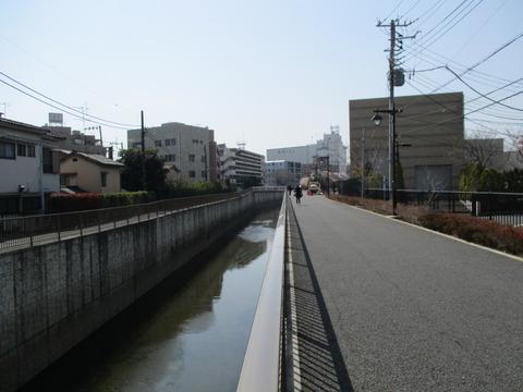 151再び善福寺川