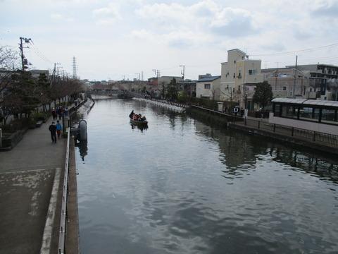38新川千本桜11