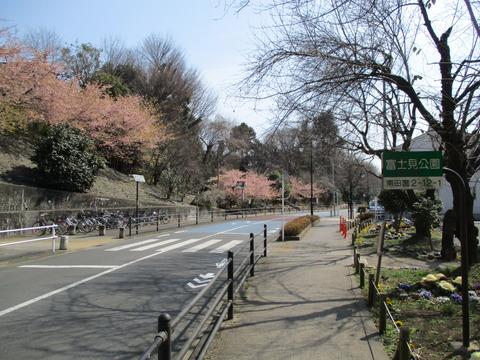 126富士見公園1