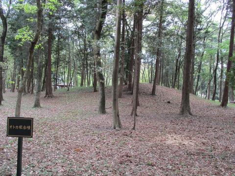 154オトカ塚古墳4