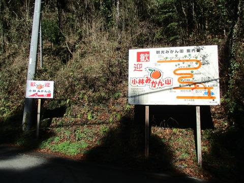 37小林みかん山入口3