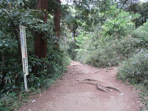 107桔梗山への分岐点1