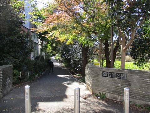 58菊名池公園2