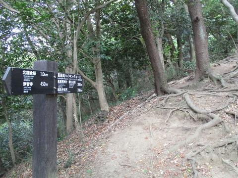 18葛原岡ハイキングコース4