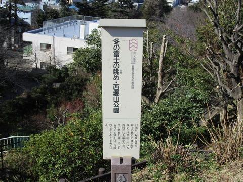12西郷山公園5
