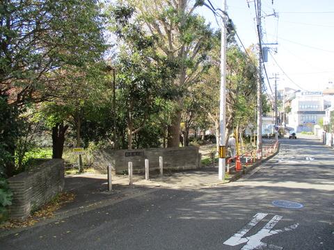 57菊名池公園1
