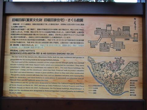 268旧堀田邸・さくら庭園4