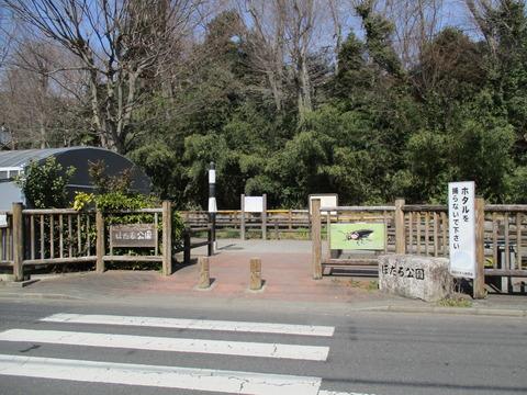 122ほたる公園6