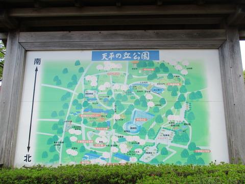 121再び天平の丘公園2