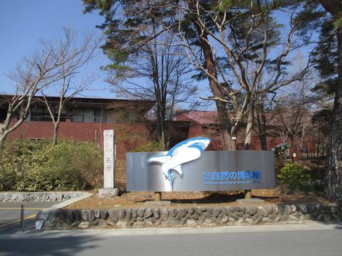 90自然の博物館2
