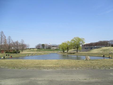 86ひょうたん池2