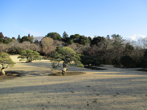 274旧堀田邸・さくら庭園10