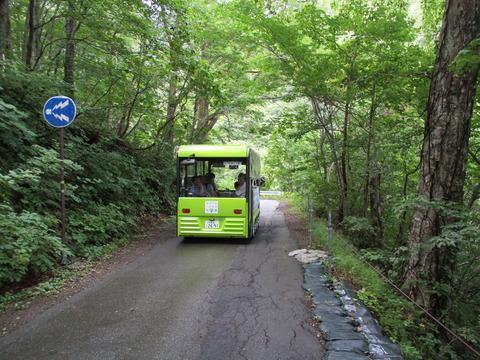 102電気ガイドバス3