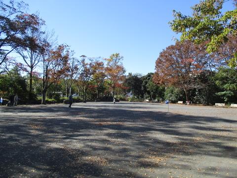 62菊名池公園6