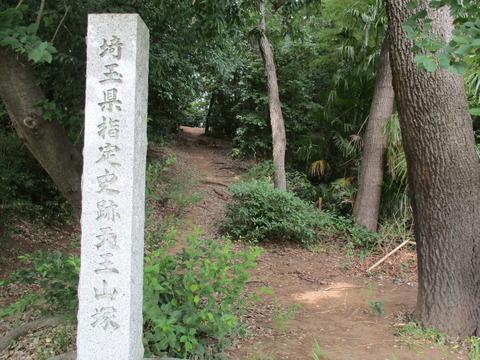179天王山塚古墳13