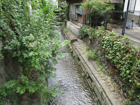 98緑橋・蛭沢川2