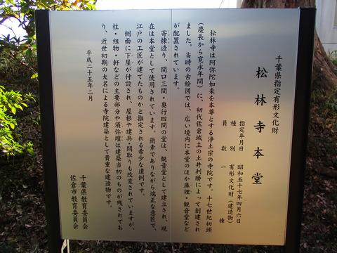 243松林寺4