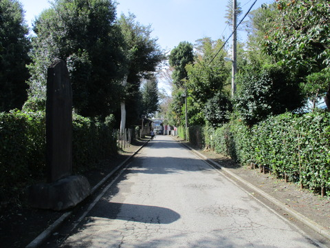 164車道の参道