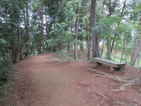 180霞丘陵ハイキングコース2