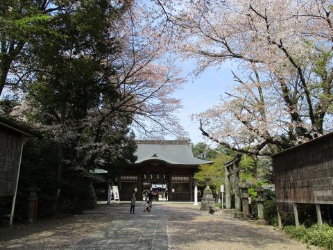 35須賀神社4