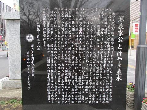 37馬場大門のケヤキ並木8