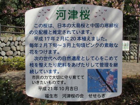 129せせらぎ遊歩道公園2