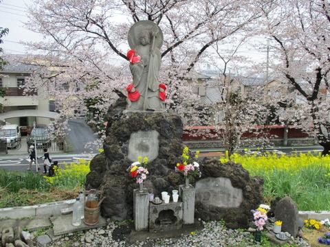 99熊谷桜堤5
