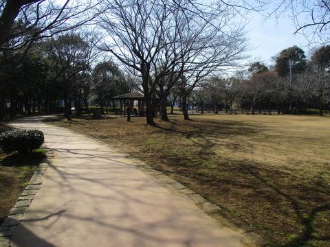 127公園内1