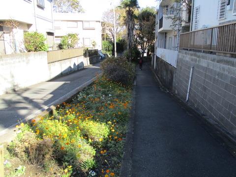 55富士塚橋6