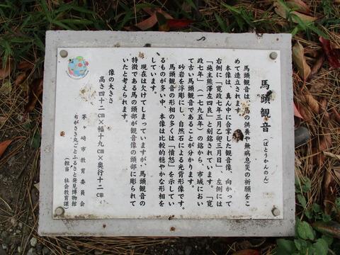 58参道松並木5