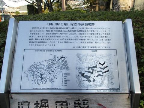 266旧堀田邸・さくら庭園2