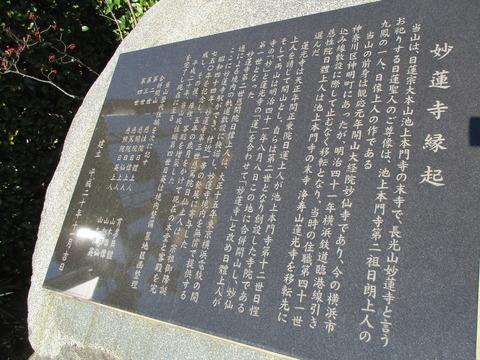 83妙蓮寺2