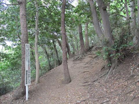 15葛原岡ハイキングコース1