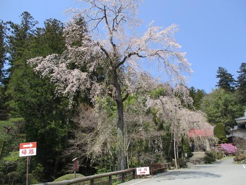 147宝登山神社8