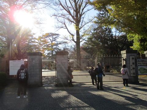11新宿御苑新宿門