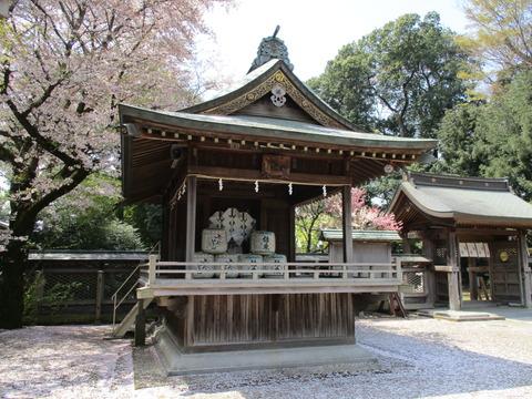 49須賀神社18