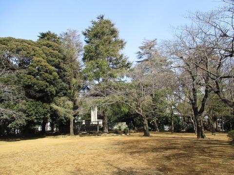 139柏公園2