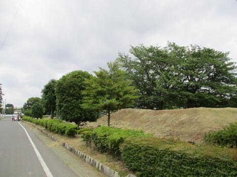 182鎮守の森公園1